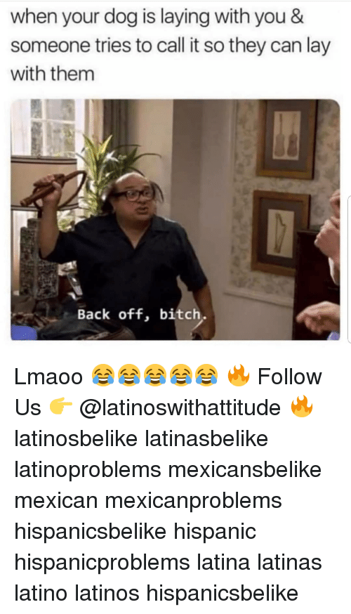 Bitch, Latinos, and Memes: when your dog is laying with you &  someone tries to call it so they can lay  with them  Back off, bitch Lmaoo 😂😂😂😂😂 🔥 Follow Us 👉 @latinoswithattitude 🔥 latinosbelike latinasbelike latinoproblems mexicansbelike mexican mexicanproblems hispanicsbelike hispanic hispanicproblems latina latinas latino latinos hispanicsbelike