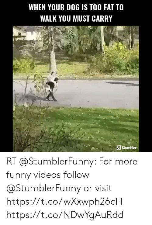 me.me: WHEN YOUR DOG IS TOO FAT TO  WALK YOU MUST CARRY  S Stumbler RT @StumblerFunny: For more funny videos follow @StumblerFunny or visit https://t.co/wXxwph26cH https://t.co/NDwYgAuRdd