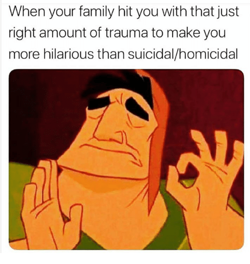 Family, Hilarious, and Humans of Tumblr: When your family hit you with that just  right amount of trauma to make you  more hilarious than suicidal/homicidal