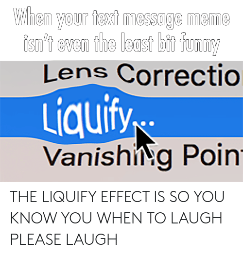 Meme, Reddit, and Lens: When your fed messoge meme  isn'1 even the least bt foon  Lens Correctio  Liquify  VanishiNg Poin THE LIQUIFY EFFECT IS SO YOU KNOW YOU WHEN TO LAUGH PLEASE LAUGH
