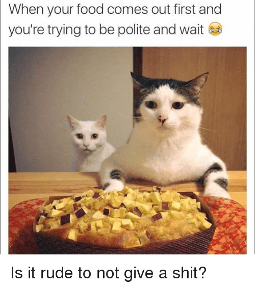 Food, Rude, and Shit: When your food comes out first and  you're trying to be polite and wait Is it rude to not give a shit?
