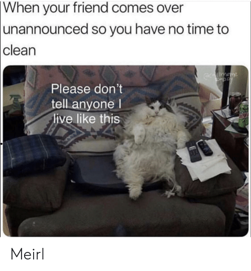Live, Time, and MeIRL: When  your friend comes over  unannounced so you have no time to  clean  Please don't  tell anyone l  live like this Meirl