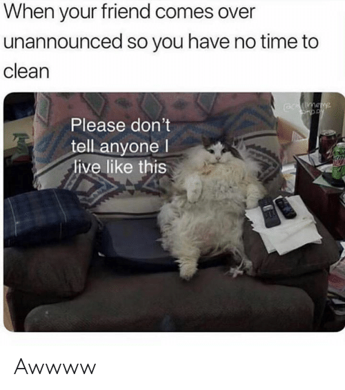 Memes, Live, and Time: When your friend comes over  unannounced so you have no time to  clean  Please don't  tell anyone l  live like this Awwww