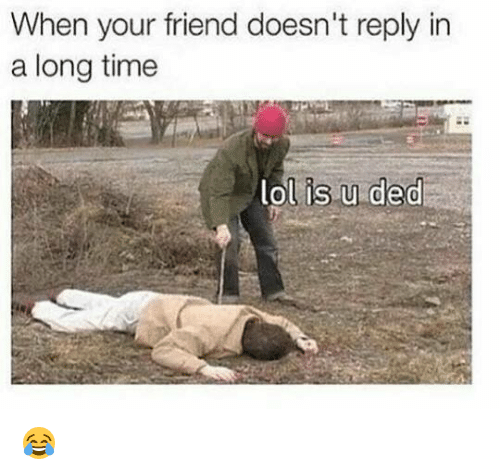 Memes, 🤖, and Ded: When your friend doesn't reply in  a long time  is u ded  lol 😂