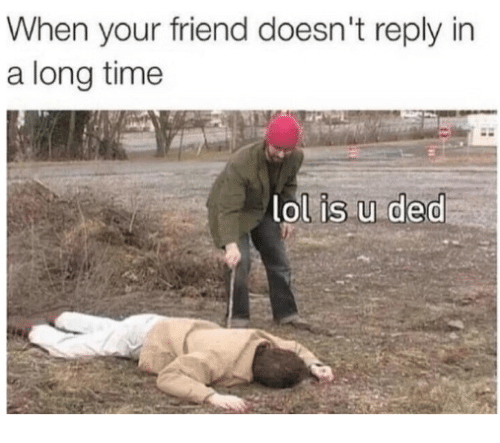 Dank, 🤖, and Ded: When your friend doesn't reply in  a long time  lol is u ded