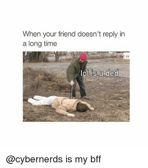 Friends, Lol, and Time: When your friend doesn't reply in  a long time  lol is u ded @cybernerds is my bff