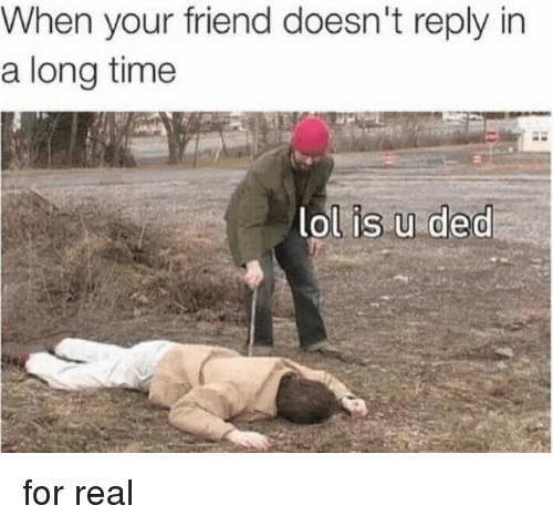 Lol, Memes, and Time: When your friend doesn't reply in  a long time  lol is u ded for real