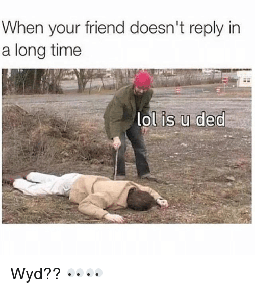 Friends, Funny, and Lol: When your friend doesn't reply in  a long time  lol is u ded Wyd?? 👀👀