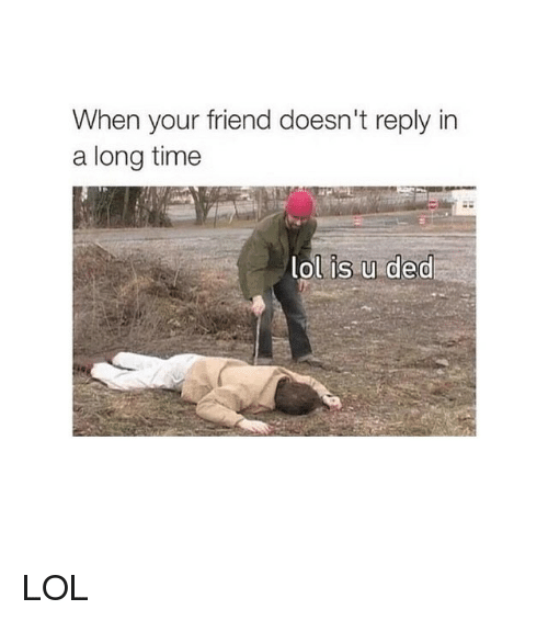 Lol, Time, and Girl Memes: When your friend doesn't reply in  a long time  lol is u ded LOL