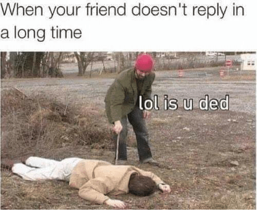 Lol, Memes, and Time: When your friend doesn't reply in  a long time  lol is u ded