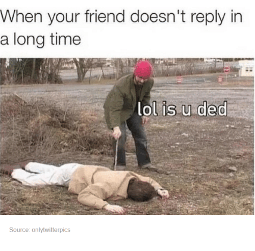Friends, Lol, and Time: When your friend doesn't reply in  a long time  lol is u ded  Source: onlytwitterpics