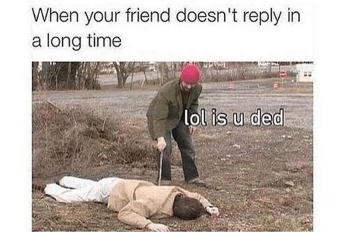 Friends, Memes, and Time: When your friend doesn't reply in  a long time  lol is u ded