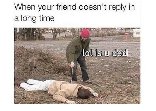 Memes, 🤖, and Ded: When your friend doesn't reply in  a long time  lol is u ded
