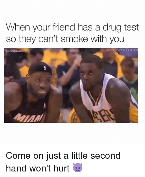 Weed, Marijuana, and Test: When your friend has a drug test  so they can't smoke with you  AshokGainer  @weedhumo Come on just a little second hand won't hurt 😈