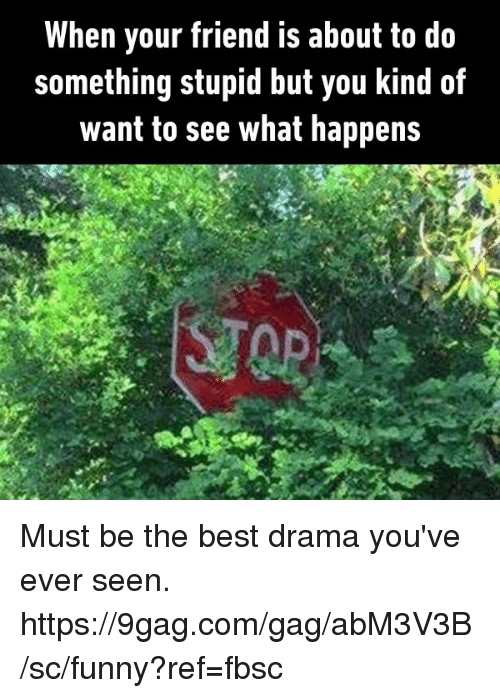 9gag, Dank, and Funny: When your friend is about to do  something stupid but you kind of  want to see what happens Must be the best drama you've ever seen.  https://9gag.com/gag/abM3V3B/sc/funny?ref=fbsc
