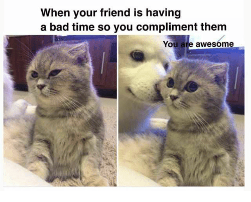 Bad, Time, and Awesome: When your friend is having  a bad time so you compliment them  You are awesome
