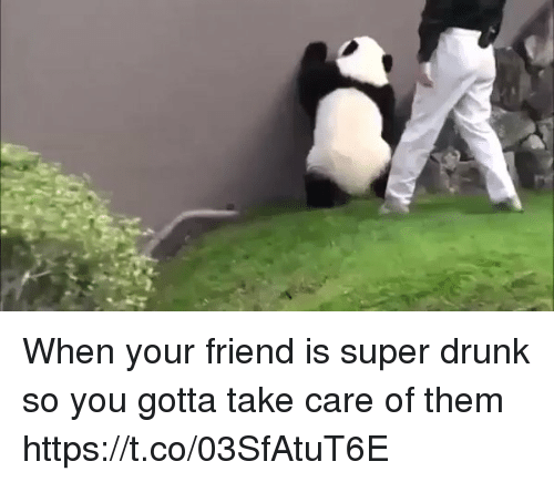Drunk, Memes, and 🤖: When your friend is super drunk so you gotta take care of them    https://t.co/03SfAtuT6E