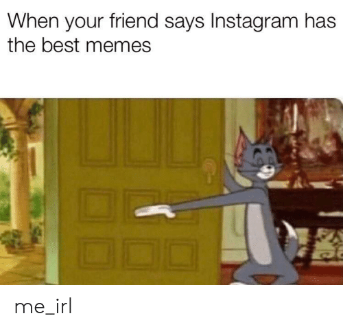 Instagram, Memes, and Best: When your friend says Instagram has  the best memes me_irl