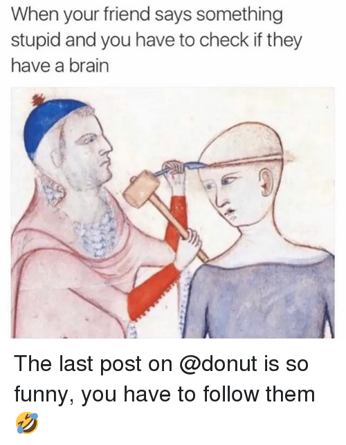 Funny, Brain, and Trendy: When your friend says something  stupid and you have to check if they  have a brain The last post on @donut is so funny, you have to follow them 🤣