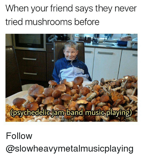 Memes, Music, and Never: When your friend says they never  tried mushrooms before  psvehedeliciam band music plaving) Follow @slowheavymetalmusicplaying