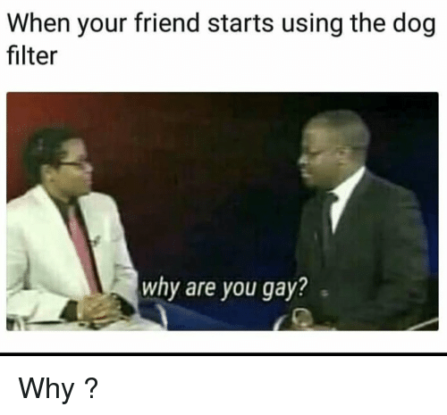 When does gay starts