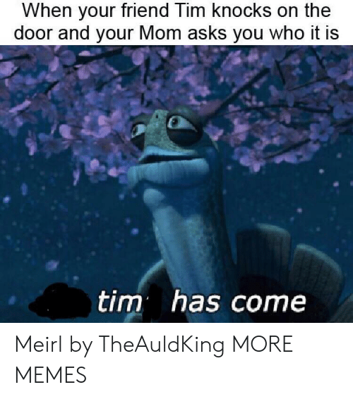 Dank, Memes, and Target: When your friend Tim knocks on the  door and your Mom asks you who it is  tim has come Meirl by TheAuldKing MORE MEMES