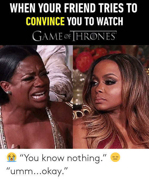 "Dank, Game, and Okay: WHEN YOUR FRIEND TRIES TO  CONVINCE YOU TO WATCH  GAME oF HRONES 😭 ""You know nothing."" 😑 ""umm...okay."""