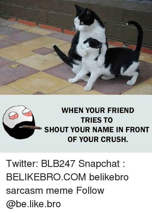 Be Like, Crush, and Meme: WHEN YOUR FRIEND  TRIES TO  SHOUT YOUR NAME IN FRONT  OF YOUR CRUSH. Twitter: BLB247 Snapchat : BELIKEBRO.COM belikebro sarcasm meme Follow @be.like.bro