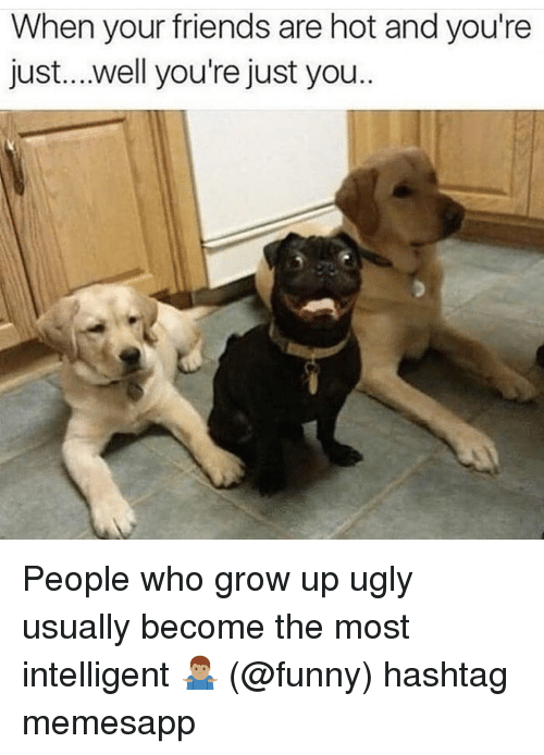 Friends, Funny, and Memes: When your friends are hot and you're  just....well you're just you People who grow up ugly usually become the most intelligent 🤷🏽♂️ (@funny) hashtag memesapp