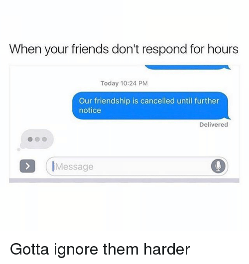 Friends, Memes, and Today: When your friends don't respond for hours  Today 10:24 PM  Our friendship is cancelled until further  notice  Delivered  IMessage Gotta ignore them harder