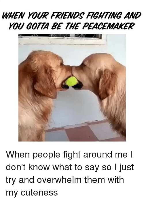 when your friends fighting and gotta be the peacemaker when 1023097 ✅ 25 best memes about best friend fight best friend fight memes