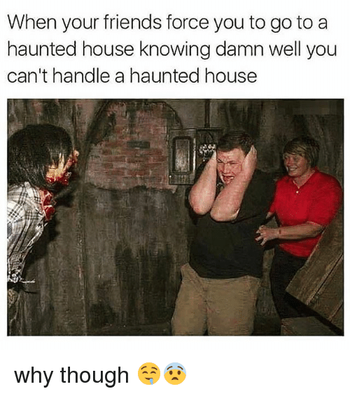 Friends, Memes, and House: When your friends force you to go to a  haunted house knowing damn well you  can't handle a haunted house why though 🤤😨
