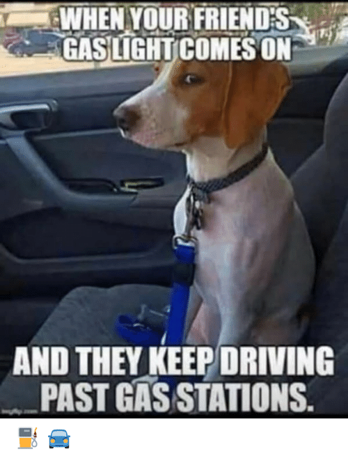 Driving, Friends, and Memes: WHEN YOUR FRIENDS  GASLIGHT COMES ON  AND THEY KEEP DRIVING  PAST GAS STATIONS. ⛽️ 🚘