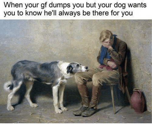 Being There, Hell, and Dog: When your gf dumps you but your dog wants  you to know he'll always be there for you