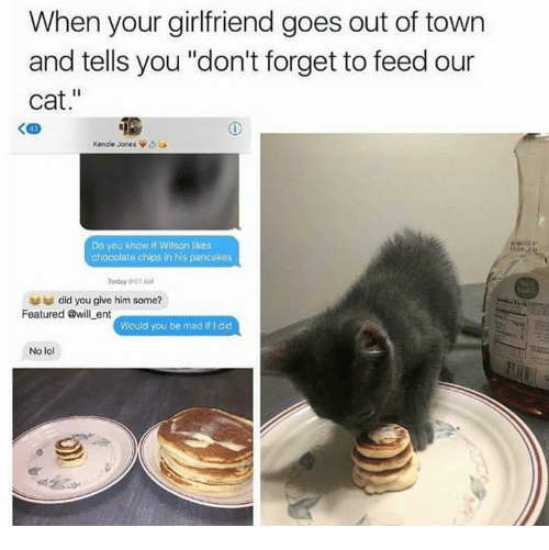 """Funny, Lol, and Chocolate: When your girlfriend goes out of town  and tells you """"don't forget to feed our  cat.""""  く四  Kenzie Jones  Do you know if Wilson likes  chocolate chips in his pancakes  Today 01 AM  did you give him some?  Featured @will ent  Would you be mad if I did  No lol"""
