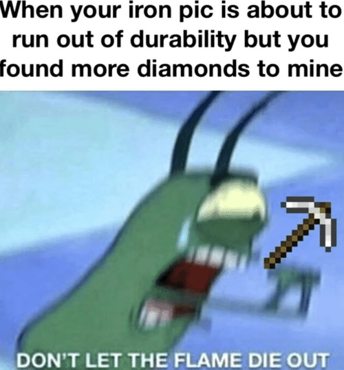 Run, Mine, and Iron: When your iron pic is about to  run out of durability but you  found more diamonds to mine  DON'T LET THE FLAME DIE OUT