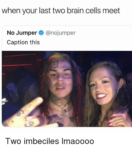 Memes, Brain, and 🤖: when your last two brain cells meet  No Jumper @nojumper  Caption this Two imbeciles lmaoooo