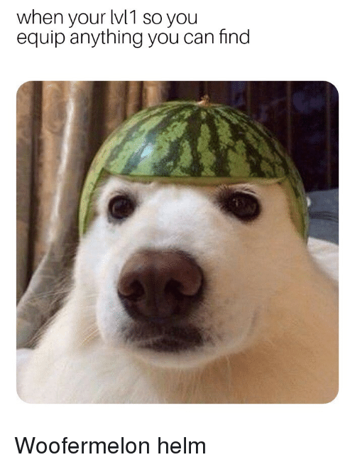 Can, You, and Find: when your lv1 so you  equip anything you can find  2  0  2 Woofermelon helm