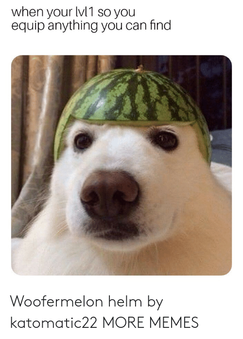 Dank, Memes, and Target: when your lv1 so you  equip anything you can find  2  0  2 Woofermelon helm by katomatic22 MORE MEMES
