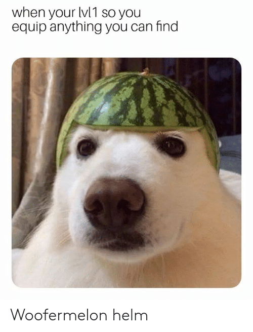 Can, You, and Find: when your lvl1 so you  equip anything you can find  2  2  2  9 Woofermelon helm