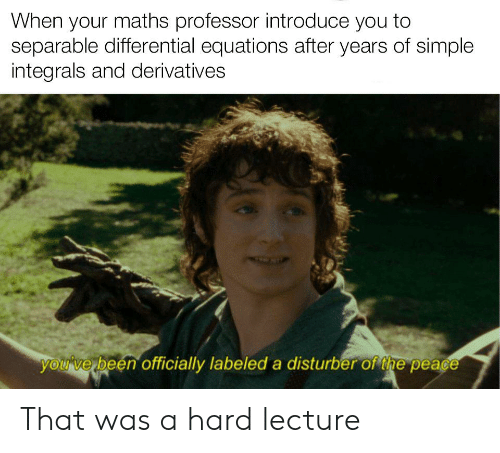 Peace, Been, and Simple: When your maths professor introduce you to  separable differential equations after years of simple  integrals and derivatives  youve been officially labeled a disturber of the peace That was a hard lecture