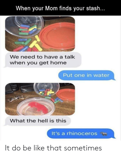 Be Like, Home, and Water: When your Mom finds your stash...  We need to have a talk  when you get home  Put one in water  What the hell is this  It's a rhinoceros on It do be like that sometimes