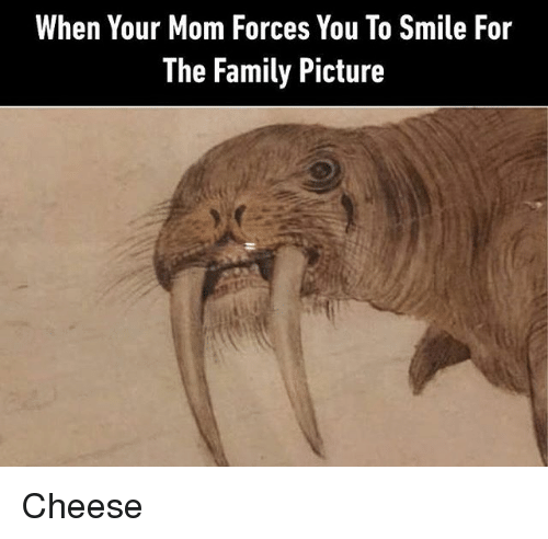Family, Smile, and Classical Art: When Your Mom Forces You To Smile For  The Family Picture Cheese