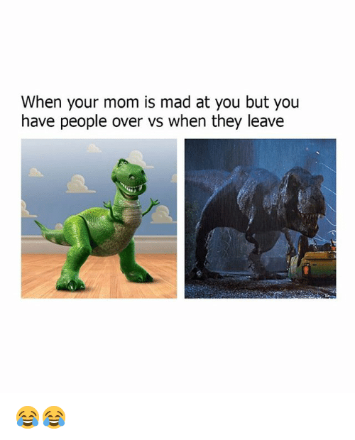 Memes, Mad, and Mom: When your mom is mad at you but you  have people over vs when they leave 😂😂