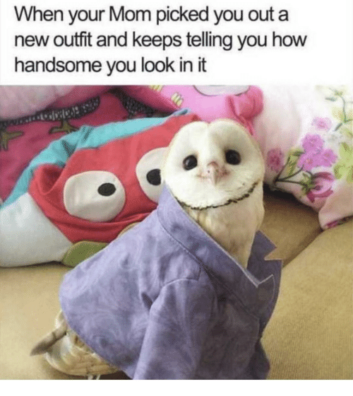 Mom, How, and New: When your Mom picked you out a  new outfit and keeps teling you how  handsome you look in it