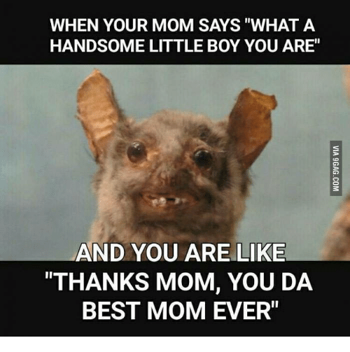 when your mom says what a handsome little boy you 18081581 ✅ 25 best memes about you da best you da best memes,Thank You Mom Meme