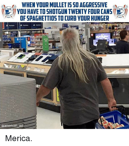 Memes, American, and 🤖: WHEN YOUR MULLET ISSOAGGRESSIVE  YOUHAVE TO SHOTGUN TWENTY FOUR CANS  OF SPAGHETTIOS TO CURB YOUR HUNGER  @american asf Merica.