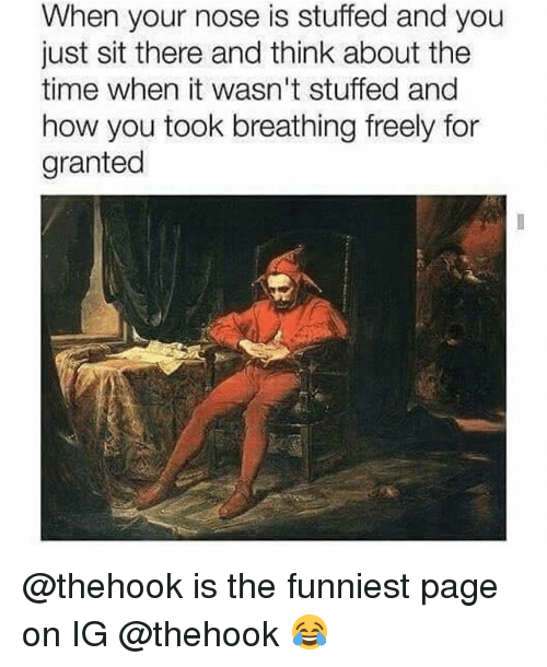 Memes, Time, and 🤖: When your nose is stuffed and you  just sit there and think about the  time when it wasn't stuffed and  how you took breathing freely for  granted @thehook is the funniest page on IG @thehook 😂