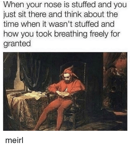 Time, MeIRL, and How: When your nose is stuffed and you  just sit there and think about the  time when it wasn't stuffed and  how you took breathing freely for  granted meirl