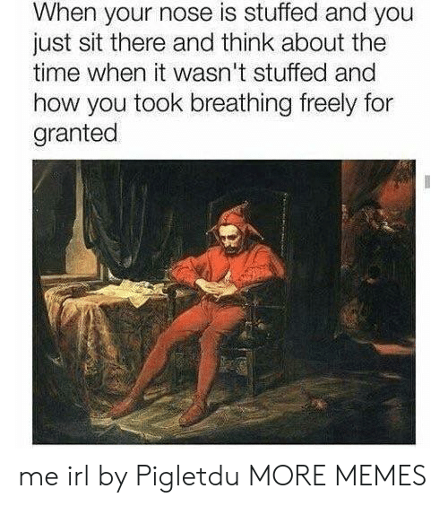 Dank, Memes, and Target: When your nose is stuffed and you  just sit there and think about the  time when it wasn't stuffed and  how you took breathing freely for  granted me irl by Pigletdu MORE MEMES